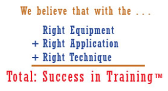 Success in training logo
